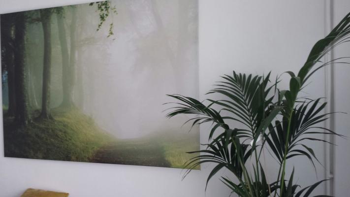 Spatiu Comercial B-dul Ficusului 5-7 B